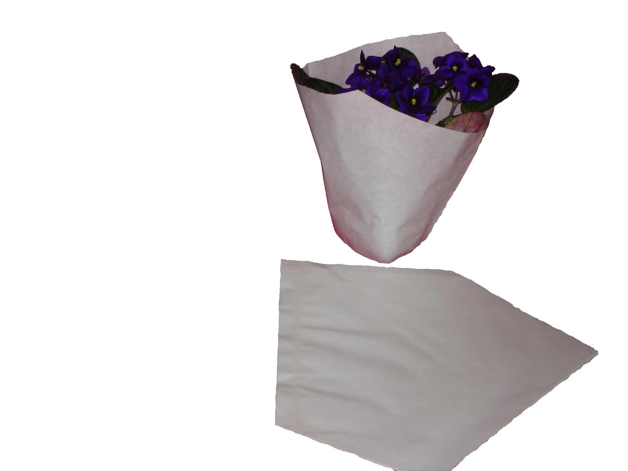 Papiertrichter, Aus Gebleicht Kraftpapier 60 Gr. Weiß Ohne Druck, Lose