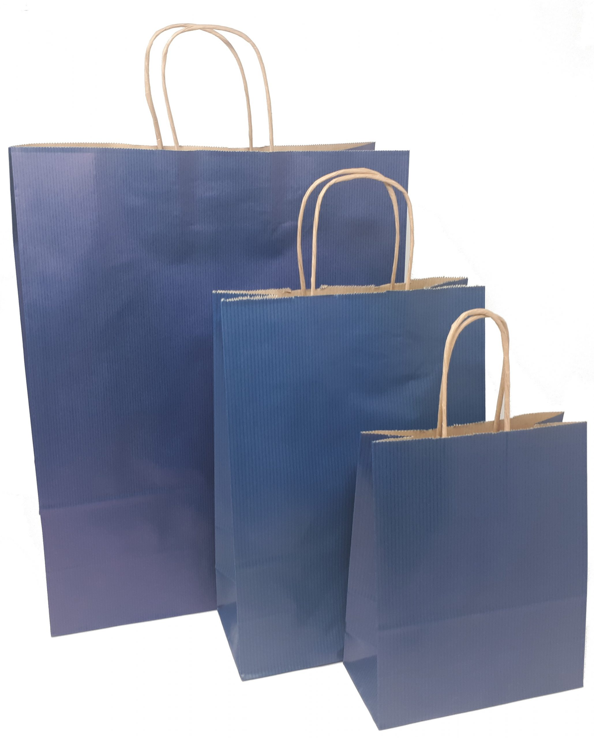 Papiertragetaschen blau mit Kordelhenkel